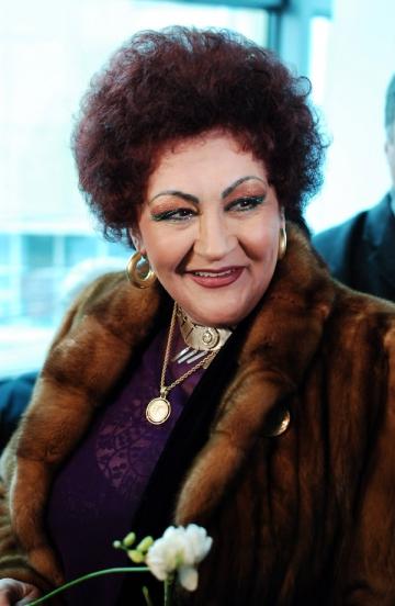 Elena Merisoreanu a renuntat la sofat din cauza unui accident rutier